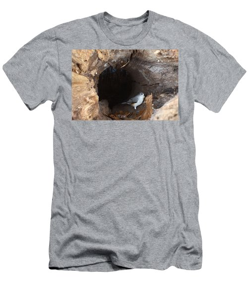 Tufted Titmouse In A Log Men's T-Shirt (Athletic Fit)