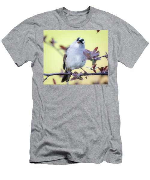 Men's T-Shirt (Athletic Fit) featuring the photograph White-crowned Sparrow  by Ricky L Jones