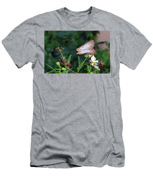 White Peacock Butterfly Men's T-Shirt (Athletic Fit)