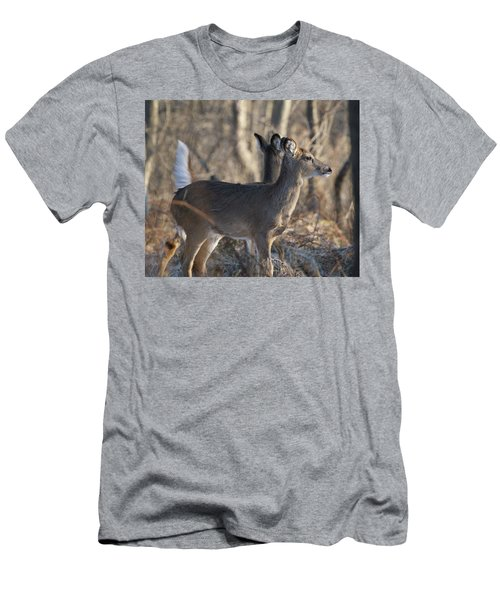 Wild Deer Men's T-Shirt (Athletic Fit)