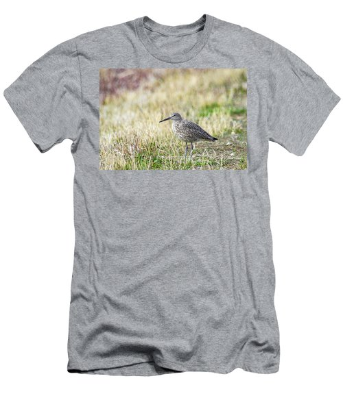 Willet Men's T-Shirt (Athletic Fit)