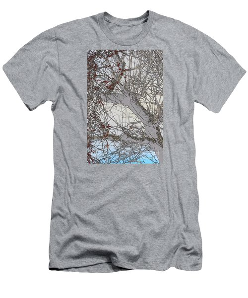Witness Tree Men's T-Shirt (Slim Fit) by Jesse Ciazza