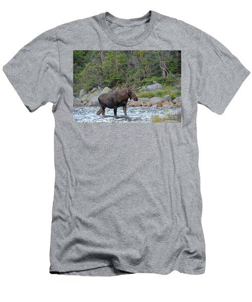 Young Bull Moose Men's T-Shirt (Athletic Fit)