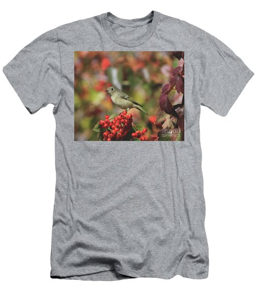 Ruby-crowned Kinglet Men's T-Shirt (Athletic Fit)