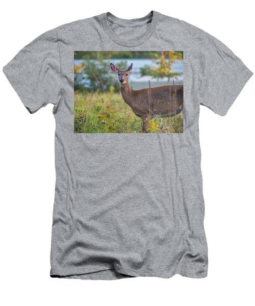 Down East Maine  Men's T-Shirt (Athletic Fit)