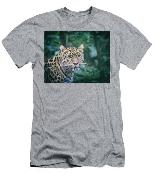 Amur Leopard Men's T-Shirt (Athletic Fit)