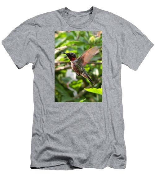 Hummingbird Men's T-Shirt (Athletic Fit)