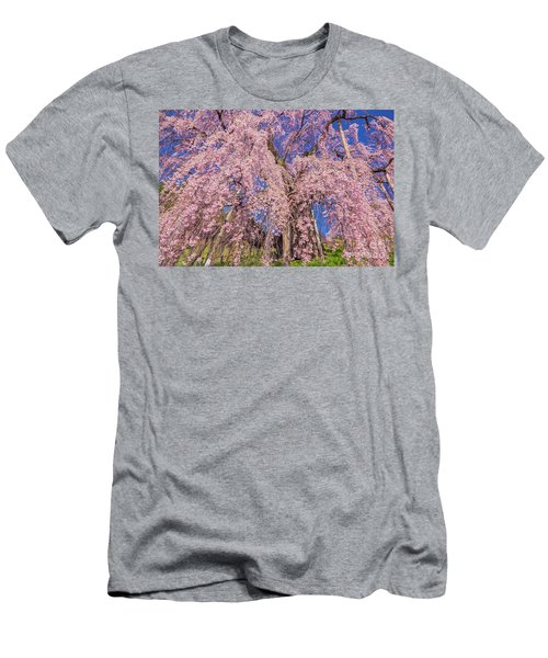 Men's T-Shirt (Athletic Fit) featuring the photograph Miharu Takizakura Weeping Cherry20 by Tatsuya Atarashi