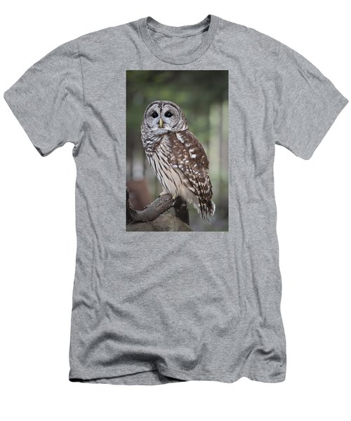 Men's T-Shirt (Slim Fit) featuring the photograph Barred Owl by Tyson and Kathy Smith