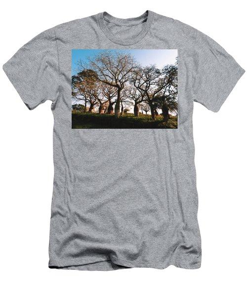 Beautiful Silk Floss Trees  Men's T-Shirt (Athletic Fit)