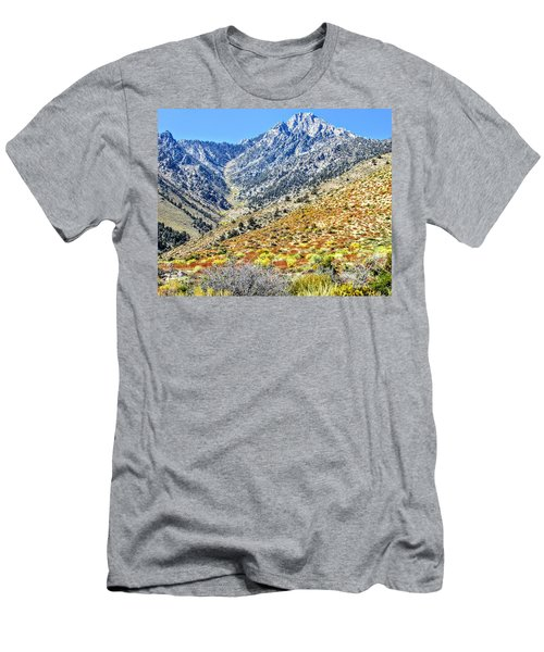 Bountiful Desert Men's T-Shirt (Athletic Fit)