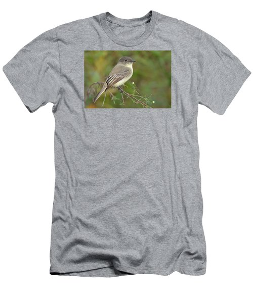 Eastern Phoebe Men's T-Shirt (Slim Fit) by Alan Lenk