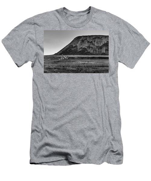 Fresh Kills Men's T-Shirt (Slim Fit) by Steven Richman