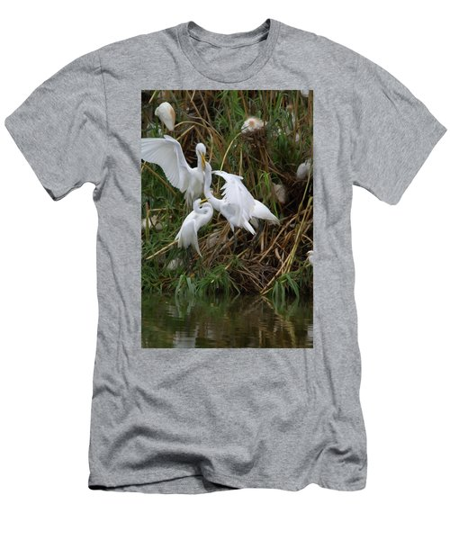 Great Egret Feeding Their Young - Digitalart Men's T-Shirt (Athletic Fit)