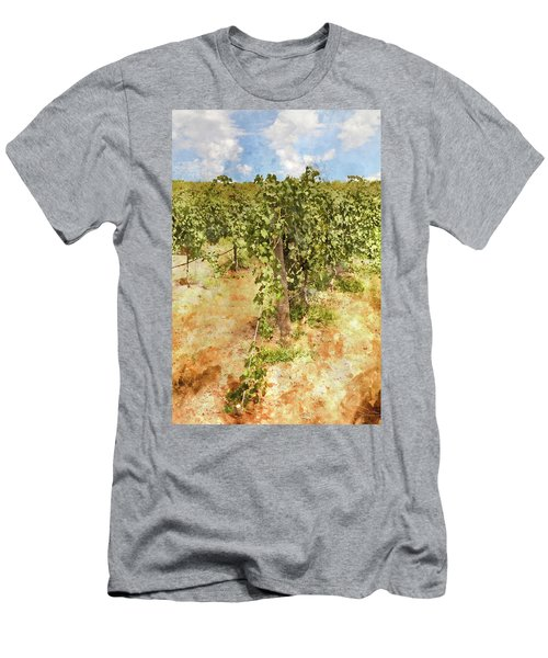 Napa Vineyard In The Spring Men's T-Shirt (Athletic Fit)