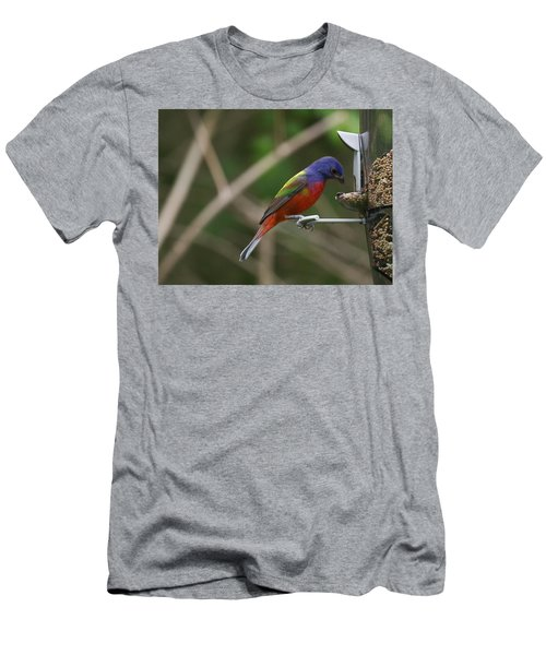 Painted Bunting Men's T-Shirt (Athletic Fit)