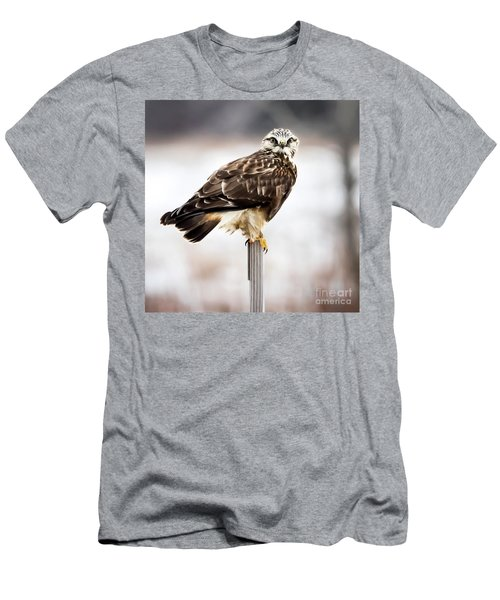 Men's T-Shirt (Athletic Fit) featuring the photograph Rough-legged Hawk by Ricky L Jones