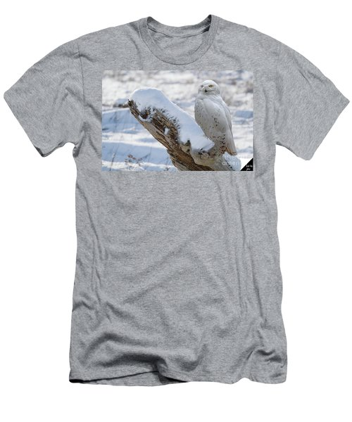 Men's T-Shirt (Slim Fit) featuring the photograph Snowy Owl by Jim  Hatch