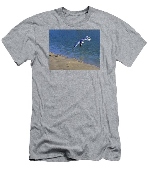 2 Terns In Flight Men's T-Shirt (Athletic Fit)