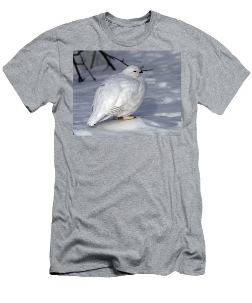 Willow Ptarmigan Men's T-Shirt (Athletic Fit)