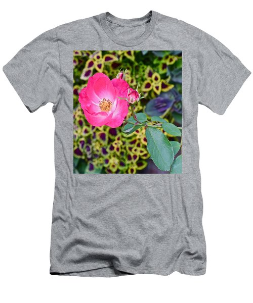 2015 Fall Equinox At The Garden Hello Fall Men's T-Shirt (Athletic Fit)