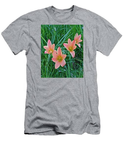 2015 Spring At The Gardens Meadow Garden Tulips 3 Men's T-Shirt (Athletic Fit)