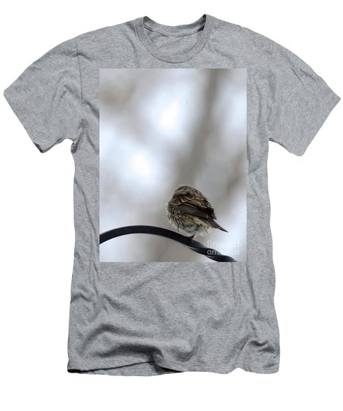 25 Degrees Men's T-Shirt (Athletic Fit)