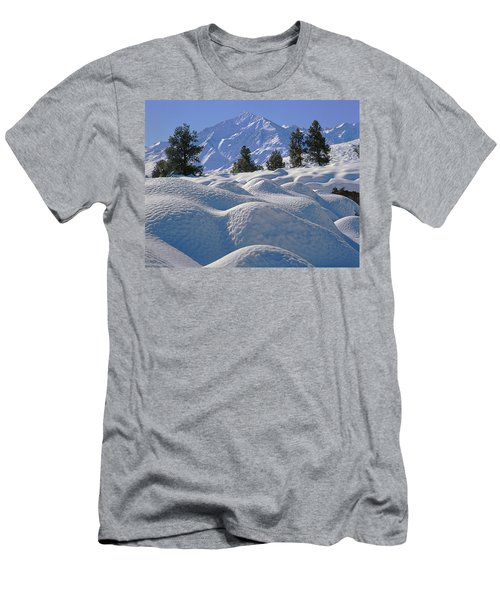2m6402 Mt. Tom From Sherwin Grade Men's T-Shirt (Athletic Fit)