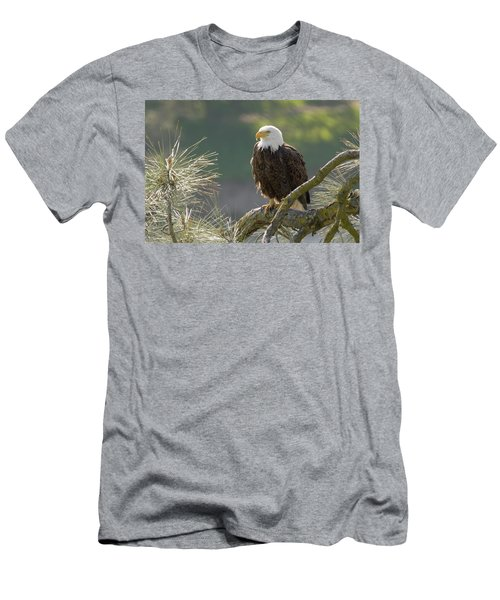 Men's T-Shirt (Slim Fit) featuring the photograph Bald Eagle by Doug Herr