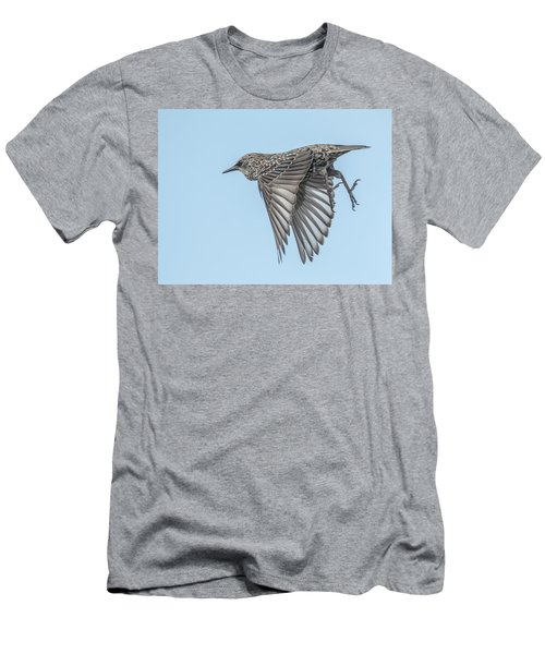 European Starling Men's T-Shirt (Slim Fit) by Tam Ryan