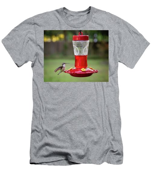 My Sweet Hummingbird Men's T-Shirt (Athletic Fit)