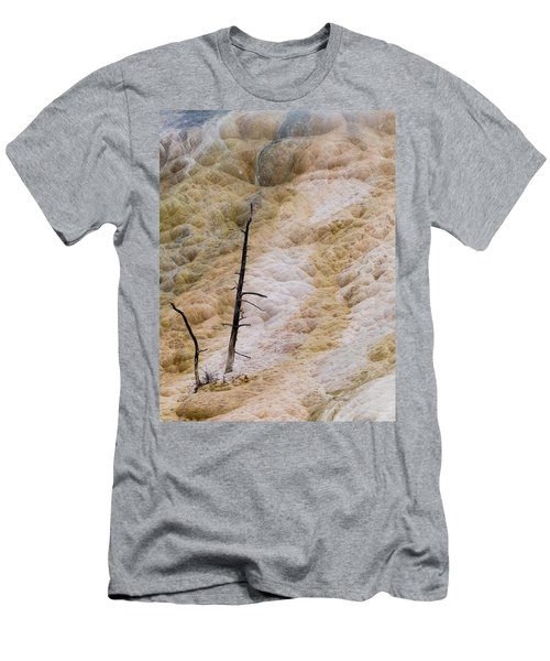 Mammoth Hot Spring Terraces Men's T-Shirt (Athletic Fit)