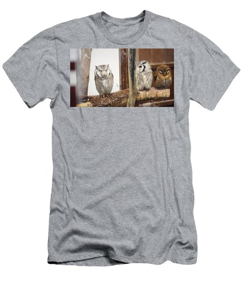 Owl Men's T-Shirt (Athletic Fit)