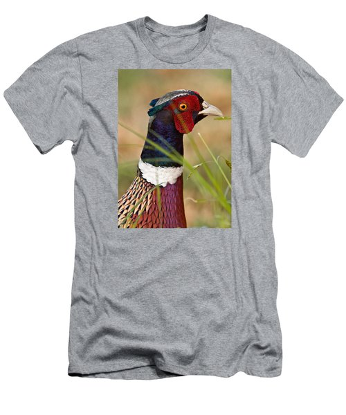 Men's T-Shirt (Slim Fit) featuring the photograph Ring-necked Pheasant by Doug Herr