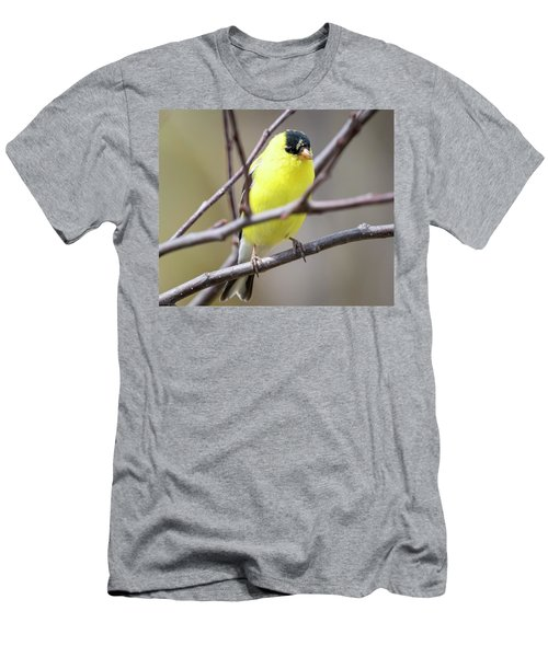 Men's T-Shirt (Athletic Fit) featuring the photograph American Goldfinch  by Ricky L Jones