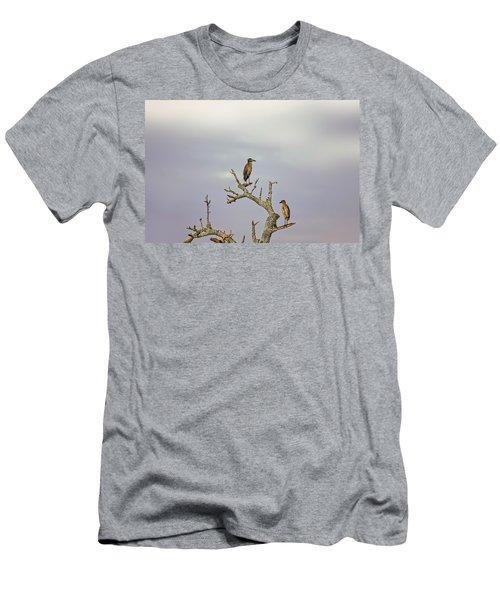 Green Heron Men's T-Shirt (Slim Fit) by Peter Lakomy