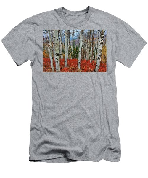Rocky Mountain Fall Men's T-Shirt (Athletic Fit)