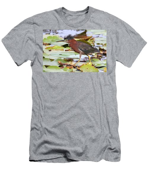 Green Heron Men's T-Shirt (Athletic Fit)