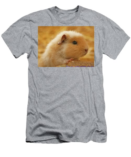 Guinea Pig Men's T-Shirt (Athletic Fit)