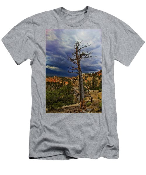 Bryce Canyon National Park Men's T-Shirt (Athletic Fit)