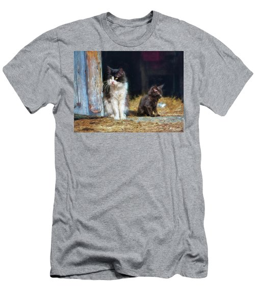 A Day In The Life Of A Barn Cat Men's T-Shirt (Athletic Fit)
