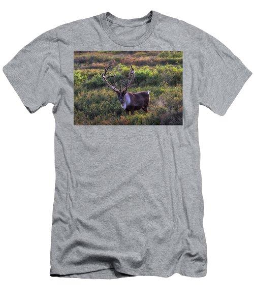 A Denali Icon Men's T-Shirt (Athletic Fit)