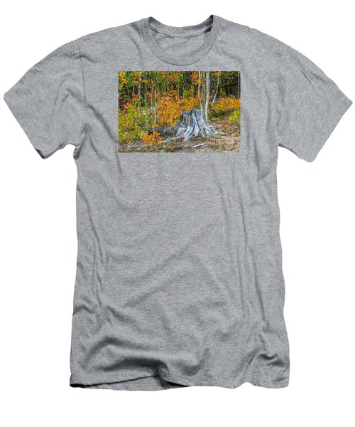 A Forest Of Color Men's T-Shirt (Slim Fit) by Stephen  Johnson