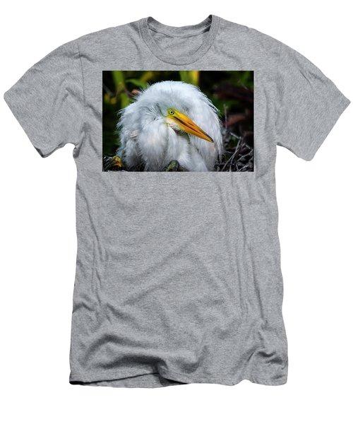 A Little Bit Of Fluff Men's T-Shirt (Athletic Fit)
