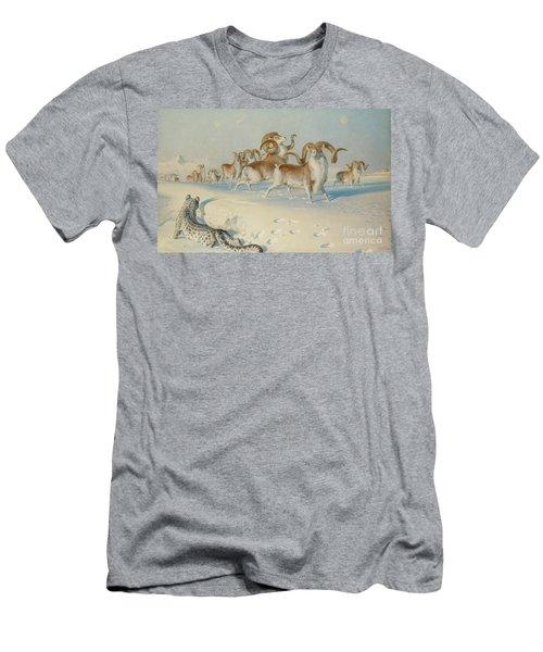A Snow Leopard Stalking Ovis Poli Men's T-Shirt (Athletic Fit)