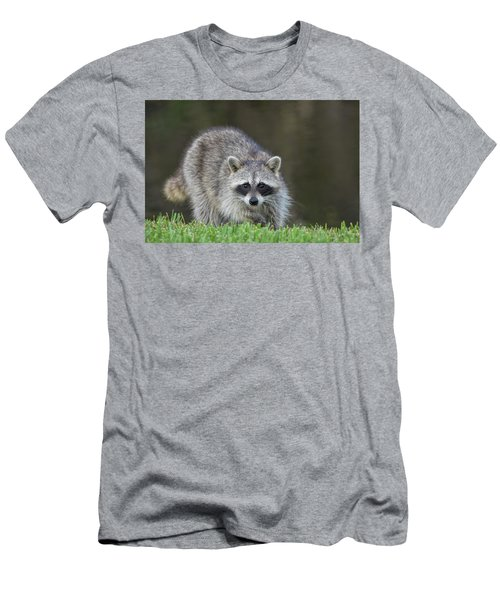 A Surprised Raccoon Men's T-Shirt (Athletic Fit)