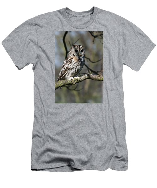A Tawny Owl  Men's T-Shirt (Athletic Fit)