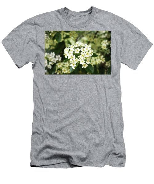 A Thousand Blossoms 3x2 Men's T-Shirt (Athletic Fit)