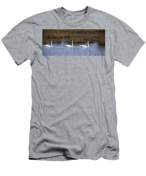 A Trio Of Swans Men's T-Shirt (Athletic Fit)