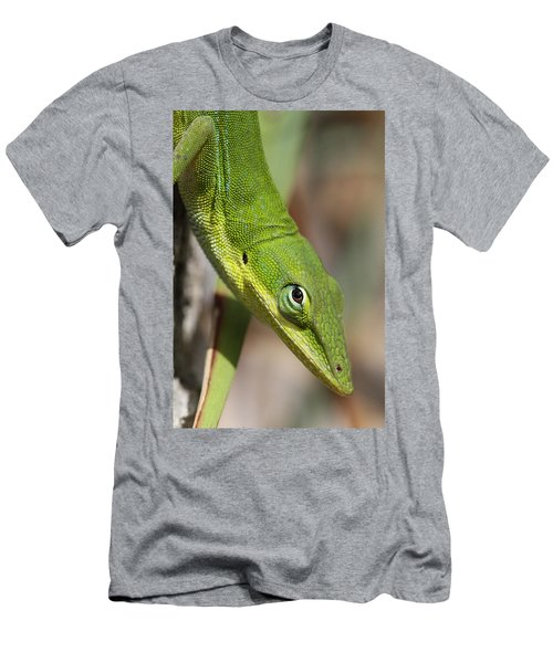 Men's T-Shirt (Slim Fit) featuring the photograph A Watchful Eye by Doris Potter